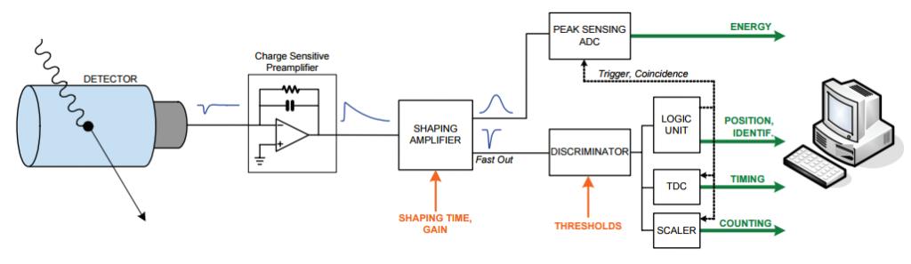 pulseProcessing